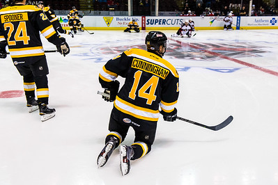 Warm-ups underway for Hockey Night in Portland.  Portland Pirates vs. the Providence Bruins at the Cross Insurance Arena in Portland, Maine on 11/28/2014. (Photo by Michael McSweeney/Portland Pirates)