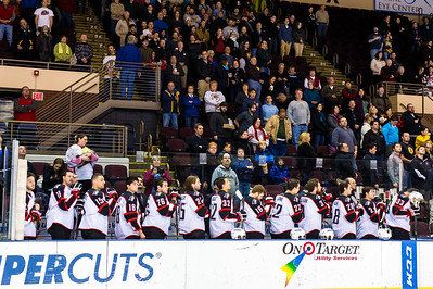 Portland Pirates.  Portland Pirates vs. the Providence Bruins at the Cross Insurance Arena in Portland, Maine on 11/28/2014. (Photo by Michael McSweeney/Portland Pirates)
