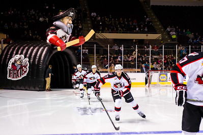 Pirates take the ice.  Portland Pirates vs. the Providence Bruins at the Cross Insurance Arena in Portland, Maine on 11/28/2014. (Photo by Michael McSweeney/Portland Pirates)