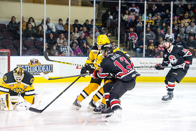 Portland Pirates regular season contest against the Providence Bruins at the Cross Insurance Arena in Portland, Maine on 12/31/2015. (Photo by Michael McSweeney/Portland Pirates)