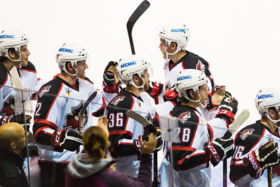 Portland Pirates players celebrate after scoring a goal in the 3rd period of the Portland Pirates regular season contest vs. the St. John's IceCaps at the Cross Insurance Arena in Portland, Maine on 10/31/2014. (Photo by Michael McSweeney/Portland Pirates))