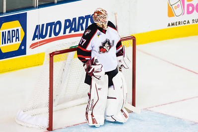 Louis Domingue #37(G) of the Portland Pirates. Portland Pirates regular season contest vs. the St. John's IceCaps at the Cross Insurance Arena in Portland, Maine on 10/31/2014. (Photo by Michael McSweeney/Portland Pirates)