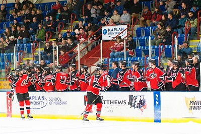 AHL Portland Pirates host the AHL Hartford Wolf Pack during a 2013-14 regular season contest at the Androscoggin Bank Colisée, Lewiston, Maine, USA, on 2/23/2014. Photo: Michael McSweeney.