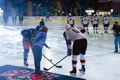 AHL Portland Pirates host the AHL Springfield Falcons during a 2013-14 regular season contest at the Androscoggin Bank Colisée, Lewiston, Maine, USA, on 3/9/2014. Photo: Michael McSweeney.