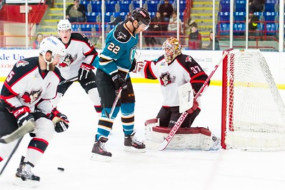 AHL Portland Pirates host the AHL Worcester Sharks in a 2013-14 regular season contest at the Androscoggin Bank Colisée, Lewiston, Maine, USA on 1/21/2014. Photo: Michael McSweeney.