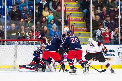 AHL Portland Pirates host the AHL Springfield Falcons in a 2013-14 regular season contest at the Androscoggin Bank Colisée, Lewiston, Maine, USA on 1/17/2014. Photo: Michael McSweeney.