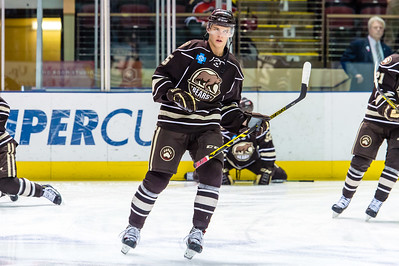 Portland Pirates vs. Hershey Bears at the Cross Insurance Arena in Portland, Maine on 3/20/2015. (Photo by Michael McSweeney/Portland Pirates)