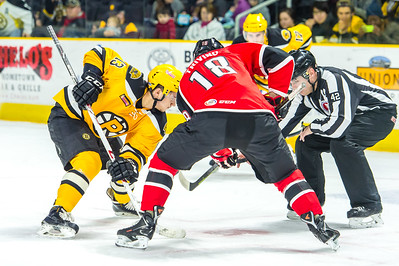 Portland Pirates vs. Providence Bruins at the Dunkin Donuts Center in Providence, Rhode Island on 1/11/2015. (Photo by Michael McSweeney/Portland Pirates)