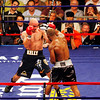18 October 2008: Kelly Pavlik (black trunks) is about to get hit with a right from Bernard Hopkins (black trunks, white trim) during their 12 round bout in Atlantic City, New Jersey.  Hopkins won by decision