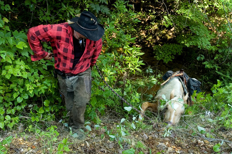 "After taking his horse to drink in a creek, ""Bon Jovi"" can't climb the steep and muddy bank and falls back into the water. Guy had to find another way back to the road through the woods."