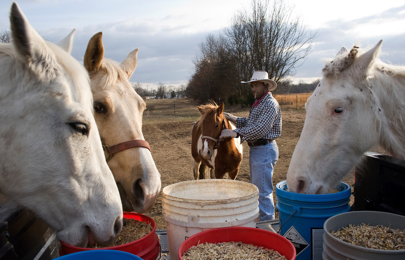 "As Collis Crayton pets one of his ponies, some horses can't wait for their food to be offloaded from the truck. ""If something is wrong with one of the horses, you really need to know what it is,"" he says. ""You have to be a doctor to them; you've got to be like a mom and a dad to them, really."""