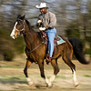 Collis Crayton rides near the Wheeler Quarter Horse Association's barn on Highway 72, between Hillsboro and Courtland, Monday, March 9, 2009. Crayton goes to the barn everyday early in the morning to look after the horses before going to work at the school.