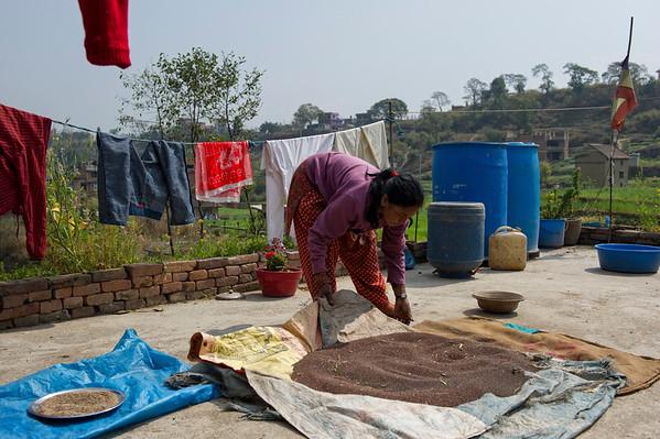Tula Laxmi Bajracharya(50) is drying beans on the rooftop. Bungamati, Nepal, 2014