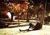 20111009_0326 edit 2
