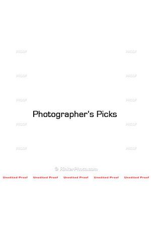 smugmug spacer Photog Picks