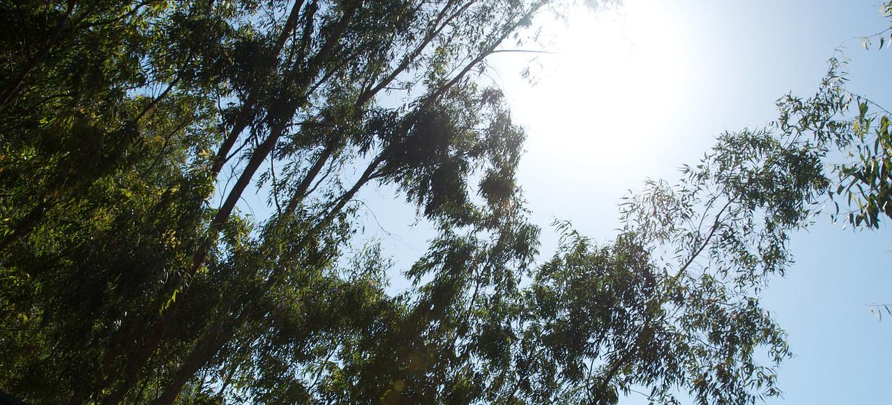Marbella_ 2011-04-2942