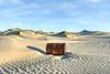 Dune Debris