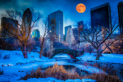 Moon Over Central Park - Award of Merit