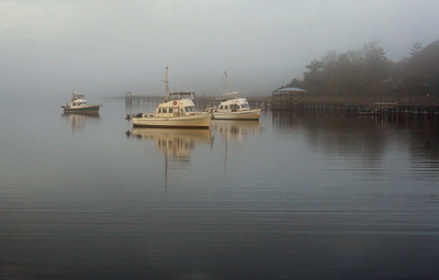 Dan Johnston - Boats in a Mist