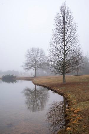 13  Fog at Daniel Stowe