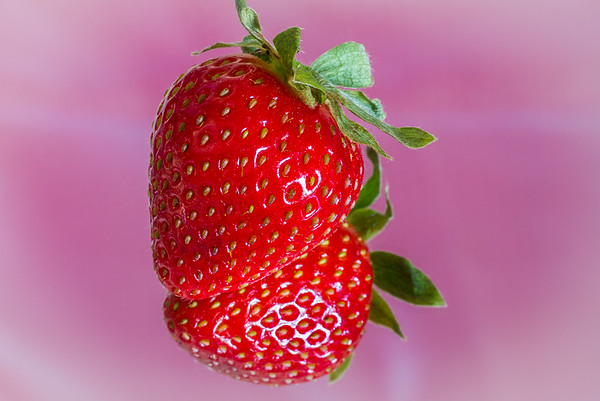 15 Strawberry Reflection