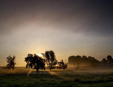14.  Morning on an Amish Farm
