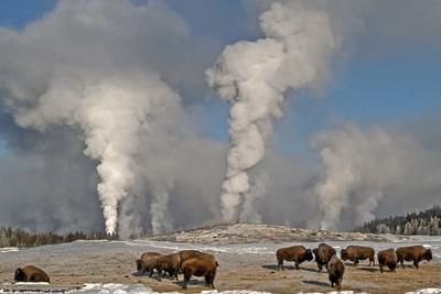 17. Yellowstone