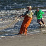 3. Bringing in the Nets