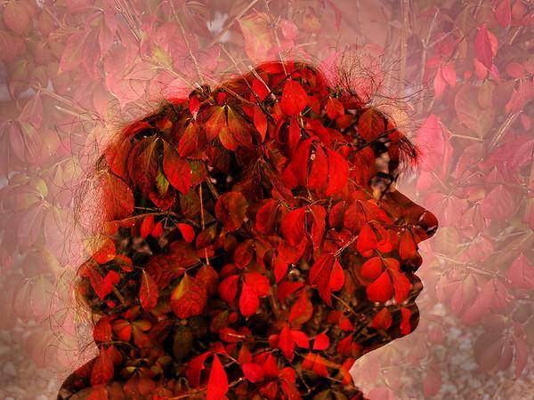 Flower Girl by Gary Emord