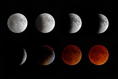 Blood Moon Eclispe - Gary Emord - PSA Score 8