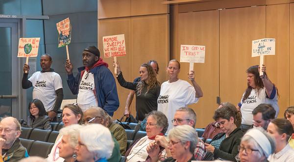 Seattle City Council Meeting June 13, 2016