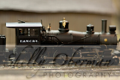 PSC Train-1880