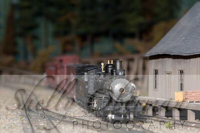 PSC Train-1863