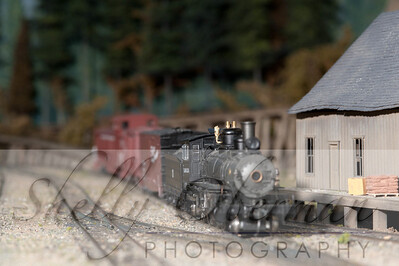 PSC Train-1865