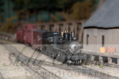 PSC Train-1860