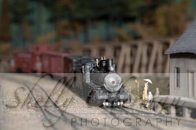 PSC Train-1856