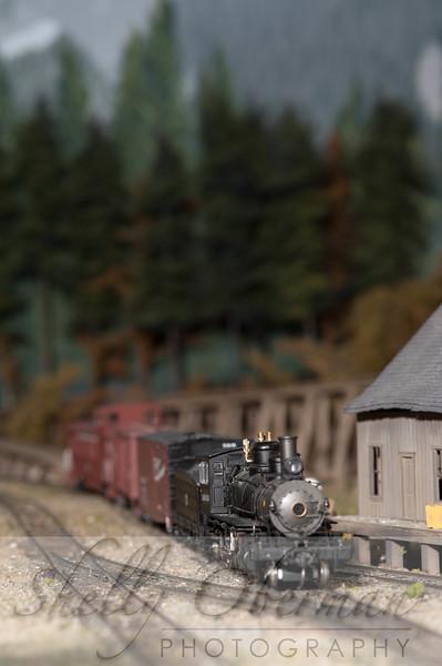 PSC Train-1870