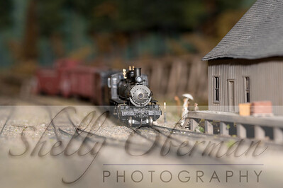 PSC Train-1852