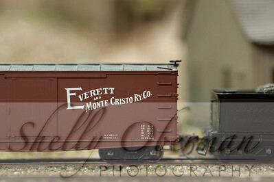 PSC Train-1881