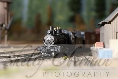 PSC Train-1873