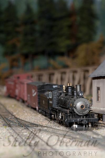 PSC Train-1868