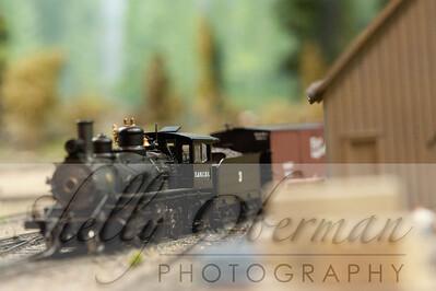 PSC Train-1891
