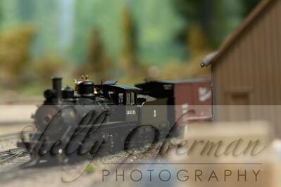 PSC Train-1890