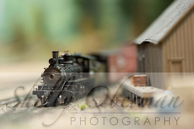 PSC Train-1888