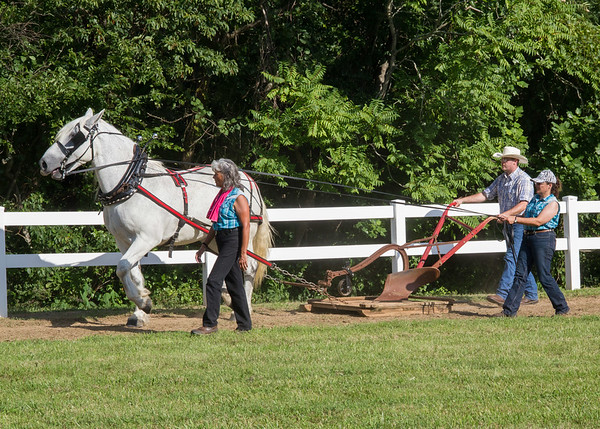 Pine Spur Hunt Club Horse Show Evening Events