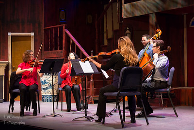 20130127 - Family Symphony Sunday Series - Stirngs - 8788