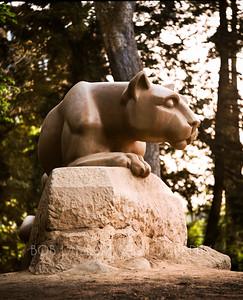 Penn State Forever
