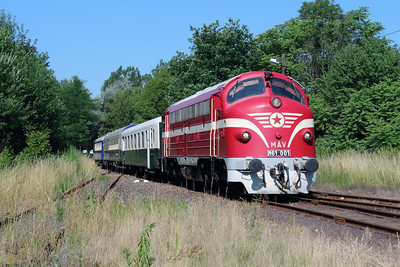 M61 001 at Sajobabony on 4th July 2015 working PTG Railtour (21)