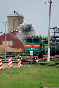 1) 2TE10U 0217 at Daugavpils Depot (Latvia) on 20th May 2013