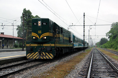 661 164 at Borovnica on 20th June 2010 (4)